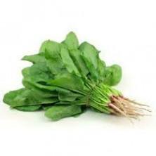 Spinach / Palak